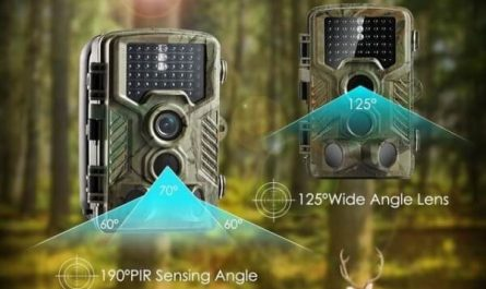 Utilité d'une caméra de chasse