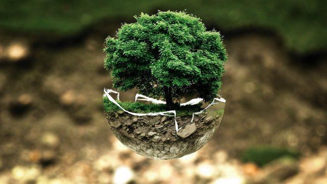 Pourquoi est-il important de préserver l'environnement ?